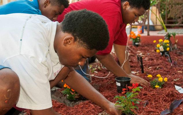 Kids gardening.